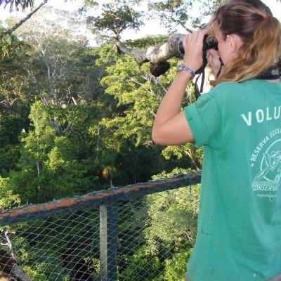 A rainforest conservation group volunteer searches for birds on a trip to Peru.
